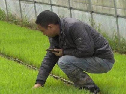 智慧施肥助力农耕