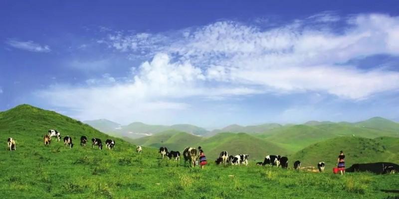 湖南南山国家公园