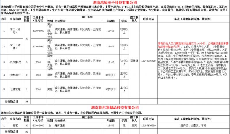 湖南鸿展电子科技有限公司-湖南菲尔发制品科技有限公司